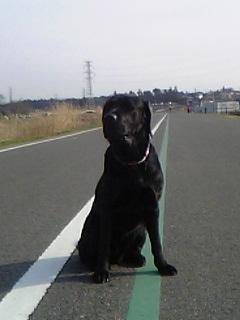 image/reomama-2007-03-02T15:17:38-1.jpg